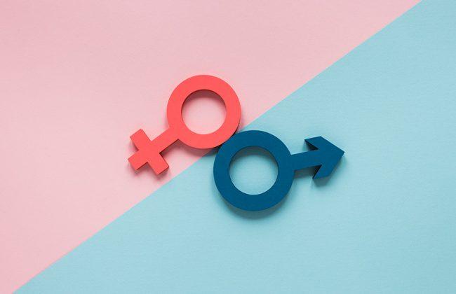 genderequality_winstone